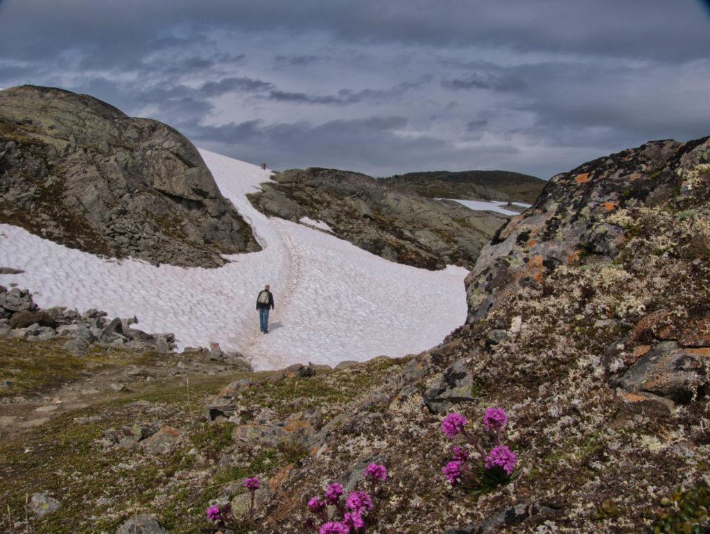 Holger im Schnee, Wanderung 2020